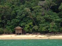 A lone bungalow in the dense jungle coast.