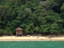 A lone bungalow in the dense jungle coast.